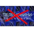 Українці у Польщі закликають не закривати українські теленовини