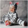Гороскоп на 2010 рік - рік Білого Тигра